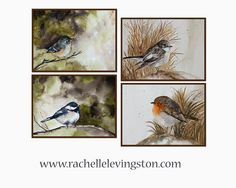 bird wall art watercolor Bird painting by rachellelevingston