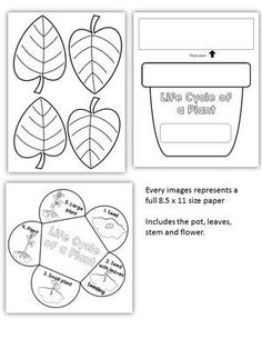 Plant Life Cycle Art Activity Template from KinderPrep on TeachersNotebook.com (9 pages)