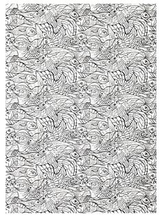 free coloring page coloring adults fishes complex very complex coloring page with