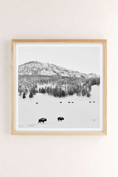 Michael ONeal American Bison Art Print - Urban Outfitters