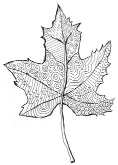 Line Pattern leaf. Zentangle-like project for youngsters