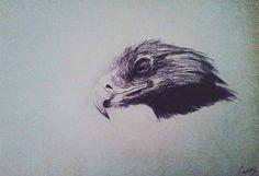 Pen sketch.  By carpiem
