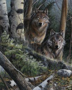 Wolf Print Watchful Eyes by artist Kevin Daniel,