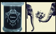 Triple scented soy candle with pheromones. 225gm Romeo fragrance begins with fresh, daring notes of Japanese grapefruit, bergamot, and lemon; followed by middle notes of peppercorn, ginger, jasmine, aquatic marine notes, and a hint of peppermint; sitting on expensive base notes of natural patchouli, cedar, vetiver, labdanum, and frankincense. $US19.69 www.forgetmenotlights.co.nz