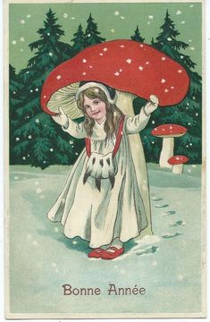 2914 best Fairy Poetry and Art images on Pinterest | Fairy tales ... #mushroomgrowhouse