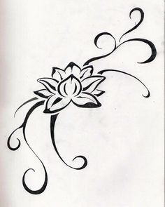 Just the lotus flower