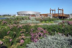 Visit the newish Green Point Park for a variety of activities - whether it is taking a stroll, having a picnic, taking the dogs for a walk or the kids for some fun time in the play park or even working out in the outdoor gym on those warm evenings. Outdoor Gym, Urban Park, Fun Time, Cape Town, Good Times, South Africa, Parks, Picnic, African