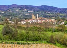 Living (with) abroad in Tuscany: Visit to Vinci, birthplace of Leonardo, one of Tus...