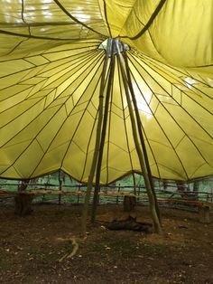 Inside view of the parachute shelter. #Bushcraft #Camp #Shelter #Parachute