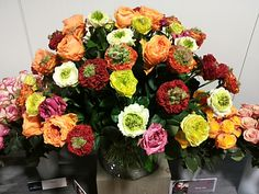 #Special Roses; All available at www.barendsen.nl