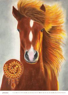12 kůň