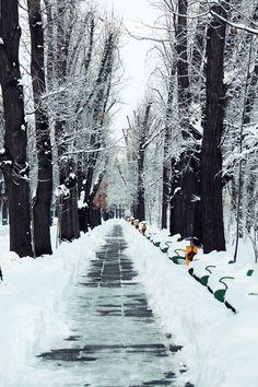parcul herestrau bucharest romania Bucharest Romania, Winter Park, Winter Wonderland, Around The Worlds, Travel, Outdoor, Outdoors, Viajes, Destinations