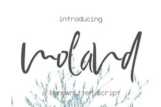 Moland Font by SophieSaxo on @creativemarket