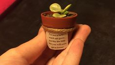 Adorable Customer Creation!! Such a sweet idea for Baby Shower Favors!! Love our succulents nestled in this tiny terra cotta pot! The poem is so sweet! Facebook.com/mabsmiracles