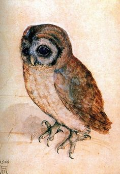I love this owl for maybe an ankle tattoo or shoulder tattoo..