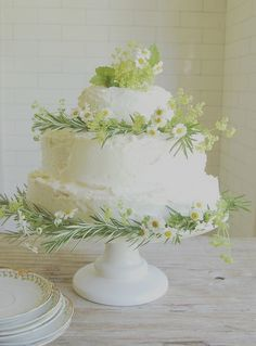 Pretty Cake decorated with chamomile blossoms, rosemary and dill!  Garden Party!