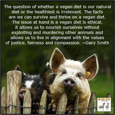 VEGANISM: A TRUTH WHOSE TIME HAS COME: What Every Vegan Needs to Know to Optimize their Diet