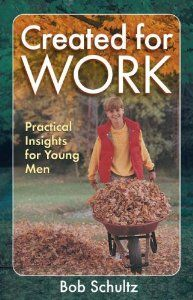 Created for Work: Practical Insights for Young Men: Bob Schultz: 9781883934118