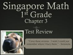Math in Focus  Singapore 1st Grade Chapter 3 Test Review (7 pages). This is a test review for the Singapore math program. It is for the first grade's Chapter 3.   The problems are very similar to the ones on the test, just the numbers and wording have changed. For each problem on the test, there are two or three practice problems. There are 8 pages.   It can also be used as an assessment. Ryan Nygren