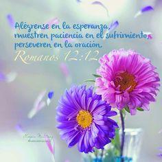 Jesus vive!! Finanzas biblicas #mujerescristianas #consejosamistad