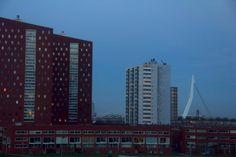 Rotterdam - www.classefotografie.nl