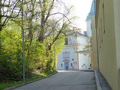 Friedhof Heiligenstadt rauf am Kahlenberg und über Nußberg retour