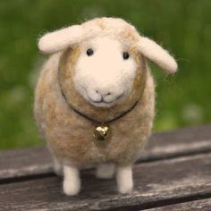 sheep~lovely