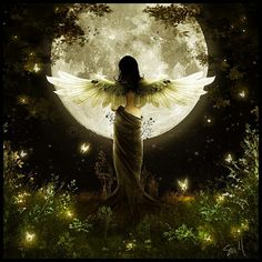 If the search for truth is your greatest passion, you are probably a Human Angel and you are just trying to remember.