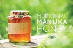 Medicinal Manuka Honey -- Really interesting article about this New Zealand honey!