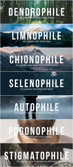 I'm a Dendrophile Limnophile Chionophile Selenophile Autophile Pogonophile & Stigmatophile. Unusual Words, Weird Words, Rare Words, Unique Words, Cool Words, Creative Words, Beautiful Words In English, Pretty Words, English Vocabulary Words
