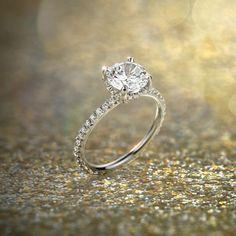 Studio Petite French Pavé Crown Diamond Engagement Ring