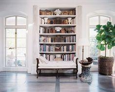 leather books + fig tree