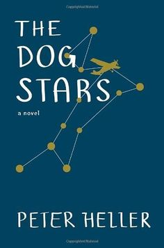 The Dog Stars by Peter Heller, http://www.amazon.com/dp/B007GZELF2/ref=cm_sw_r_pi_dp_u-Puqb1XZ2TCY