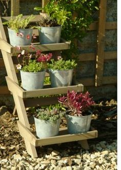 Everyone has old ladders around, what a good idea.  I already have the ladders! Yeah!