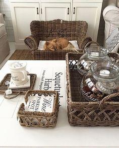 Lazy Sunday❤️ #myhome #livingroom #sleepingdog #cupoftea #rivieramaison…