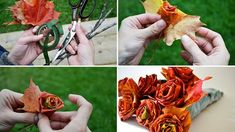 Make This Easy DIY Fall Decor That Is Absolutely Free   DIY Joy Projects and Crafts Ideas
