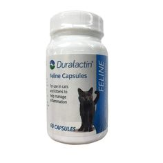 Veterinary Products Laboratories Duralactin Feline Nutritional Aid, *** Special cat product just for you. : Cat Health and Supplies Nursing Supplies, Cat Supplies, Cat Nutrition, Cat Store, Pet Supplements, Cat Training Pads, Pet Costumes, Flea And Tick, Cat Health