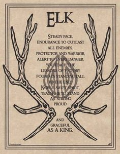 ELK PRAYER - POSTER Wicca Pagan Witch Witchcraft Goth BOOK OF SHADOWS TOTEM •…