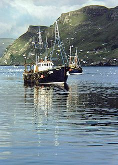 Return of the fishing boats to Portree Harbour, Isle of Skye, Scotland.