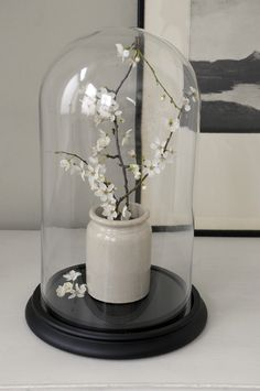 Large Victorian Glass Display Dome - £59.95