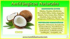 El coco es una fruta tropical obtenida del cocotero que destaca por sus múltiples cualidades beneficiosas para la salud gracias a su alto contenido en minerales y oligoelementos además de ser rico en carbohidratos complejos y ácidos grasos de cadena media.