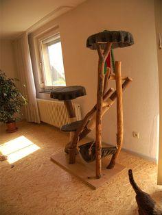 bildergebnis f r kratzbaum selbstgemacht kratzbaumideen pinterest kratzbaum und. Black Bedroom Furniture Sets. Home Design Ideas