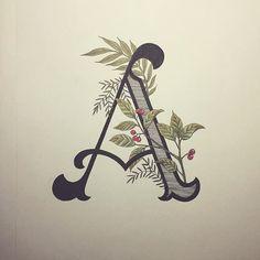 Capital A! by Typo Steve Mais Alphabet Art, Letter Art, Calligraphy Letters, Typography Letters, Typography Poster, Lettering Styles, Lettering Design, Design Poster, Design Art