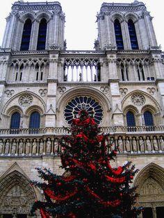 Notre Dame - Paris, Ile-de-France - Christmas
