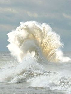 ❥ Now, that's a wave!