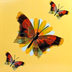 """Created by Janet Lai, this butterfly design can be found on gift boxes, 50 piece tubs, 8x8g samplers, and 6x8g cubes. Find them at our kiosk at the Westfield Mall or on our website at tcho.com under """"Lai"""" Artist Series"""