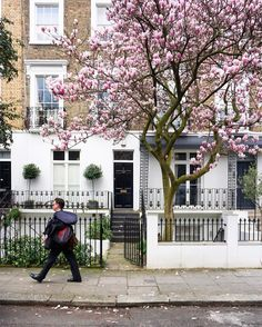 Westbourne grove. Spring in London is so pretty