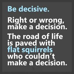 Be decisive Don't be a dead flat squirrel Indecisiveness leads to a dead end road <<literally>>
