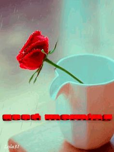 Good Morning I Miss You coffee animated miss you morning good morning red rose good morning greeting good morning quote Weekend Greetings, Ramadan Greetings, Diwali Greetings, Valentines Day Greetings, Good Morning Greetings, New Year Greetings, Christmas Greetings, Good Morning Animation, Good Morning Good Night