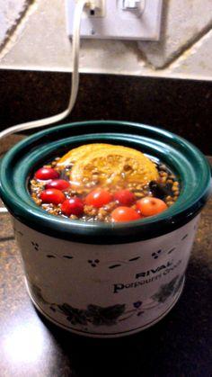 Inexpensive Gift Idea: CHRISTMAS SCENT Simmering Potpourri